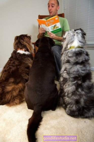 Il tempo delle storie con i cani può far leggere ai bambini