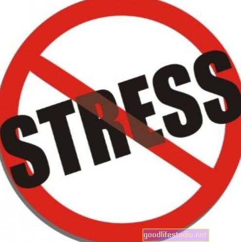 El estrés puede acelerar la mortalidad