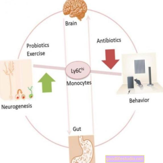 研究は腸の粘液と脳の障害の間のリンクを見つけます