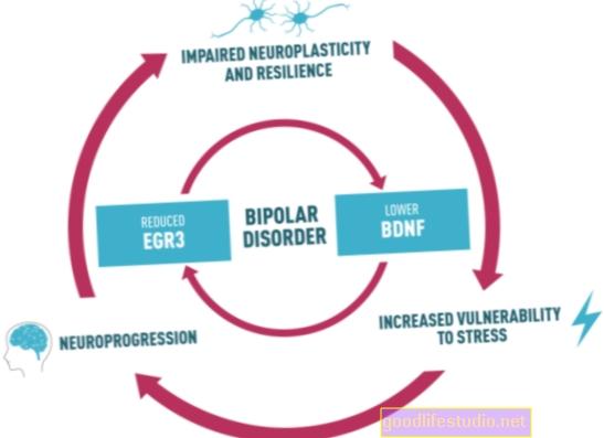 Tyrimas tiria bipolinės rizikos prisiėmimo neuromokslą