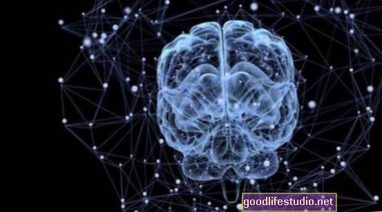 La tecnología permite que las señales cerebrales controlen la computadora