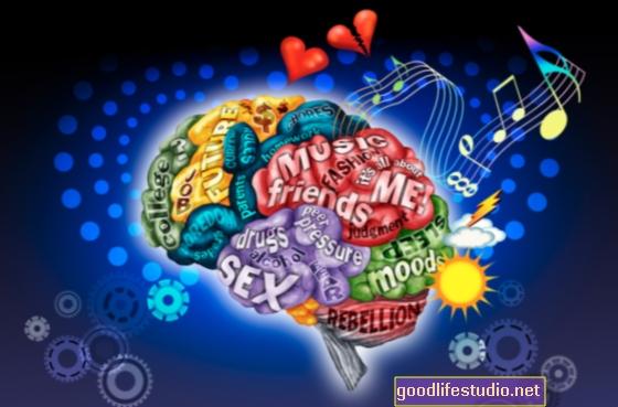 Cervello adolescente cablato per il rischio