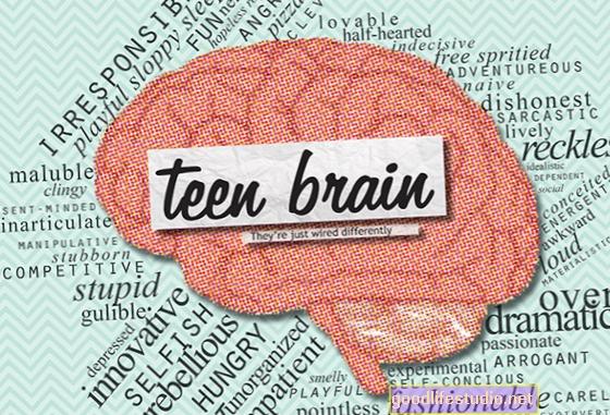 Porozumění mozku dospívajících chlapců