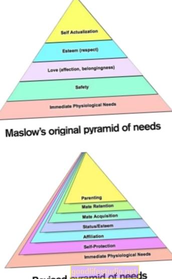 Ажурирана Маслов-ова пирамида потреба
