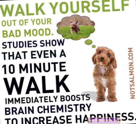 Caminar es un buen ejercicio cerebral