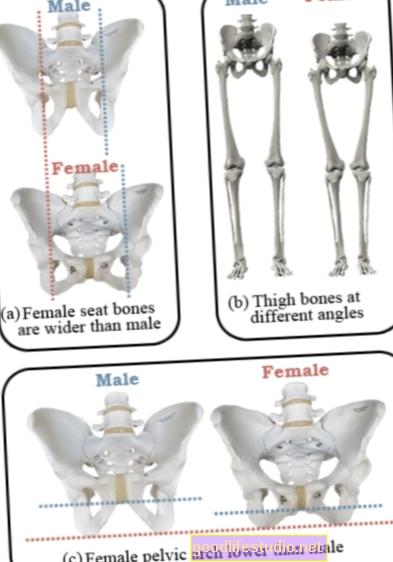 Šira razlika između muških i ženskih osobnosti u većini rodno ravnopravnih zemalja