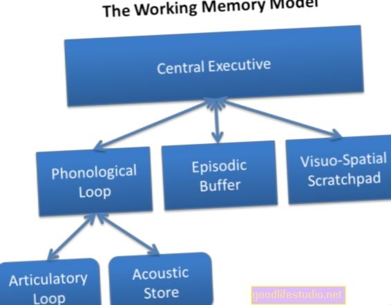 La memoria funcional influye en la toma de riesgos de los adolescentes