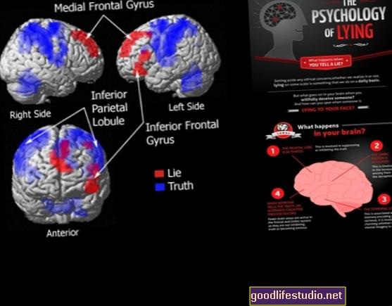 Pengesan Kebohongan Otak Anda
