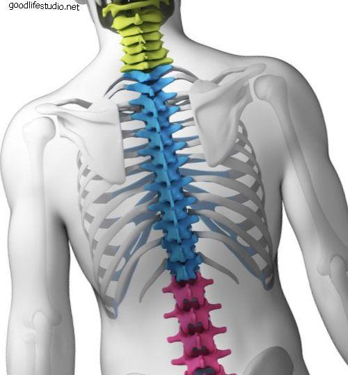 Переломы позвоночника: концепция с тремя колоннами