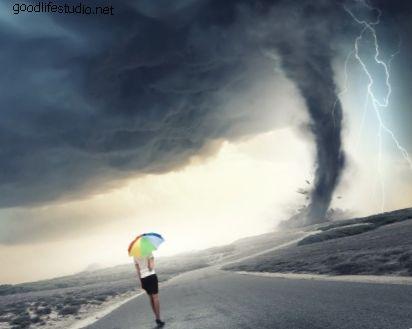 Svajonės apie tornadas