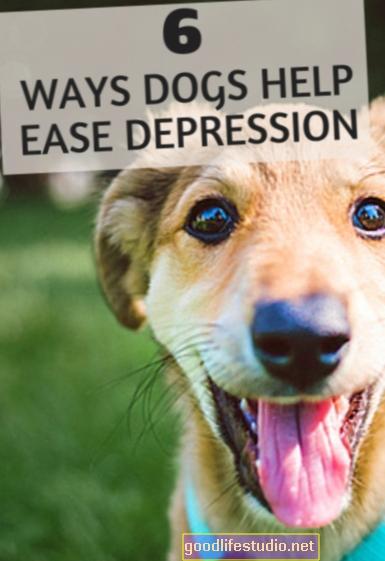 6 maneras en que las mascotas alivian la depresión