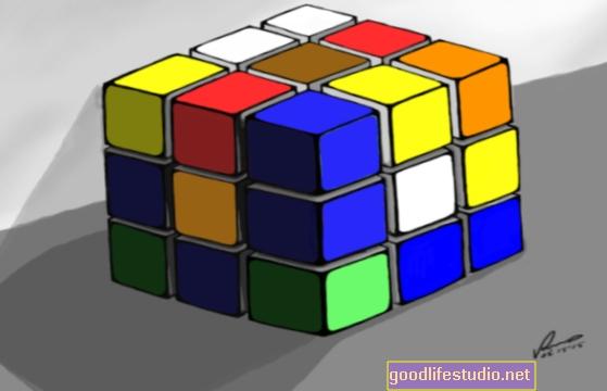Adakah Warna Hanya Ilusi yang Otak Kita Buat?