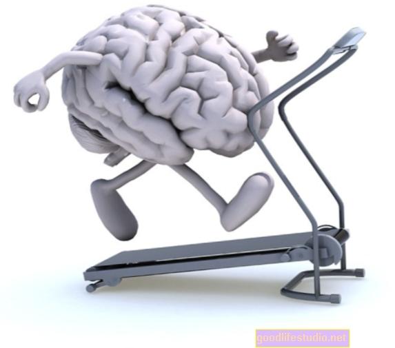 Brain Fitness se expande, pero la investigación aún se retrasa