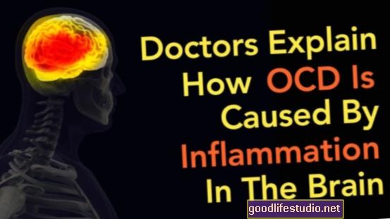 Zánět mozku a OCD