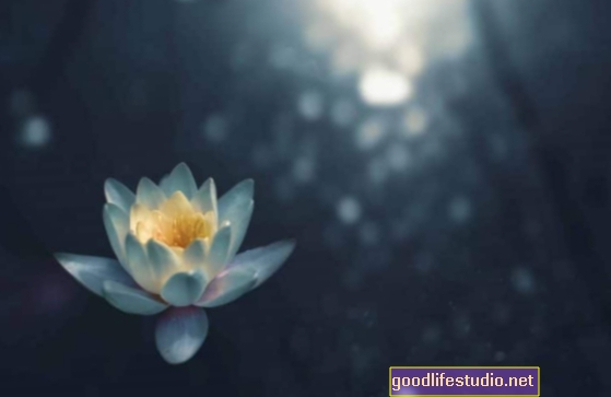 Mindfulness disposicional: darse cuenta de lo que nota
