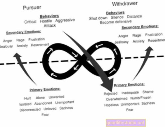 La terapia centrada en las emociones y su relación