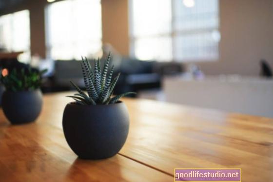 Aplinka svarbi: 7 paprasti būdai patobulinti savo darbo sritį