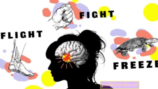 Cīņa, lidojums vai iesaldēšana: stresa reakcija