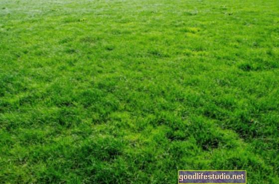 """Webinar gratuito: sconfiggere la sindrome di """"Grass is Greener"""""""