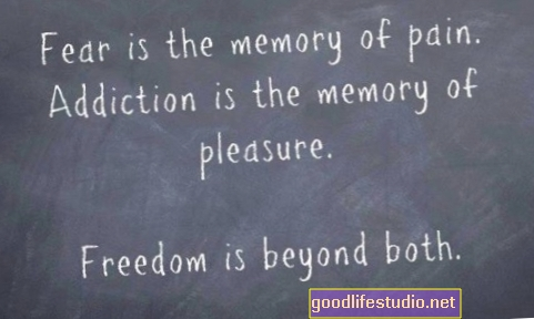 Freedom: Beyond Fear and Addiction