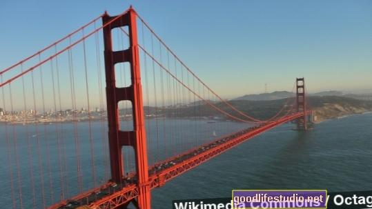 Savižudybių barjero ant Auksinių vartų tilto finansavimas