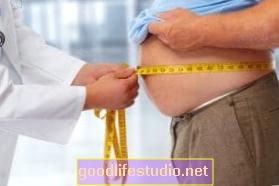Hogyan hat az elhízás az emberi agyra?