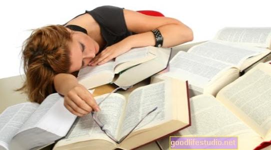 Wie Schlaf hilft, Erinnerungen zu bilden
