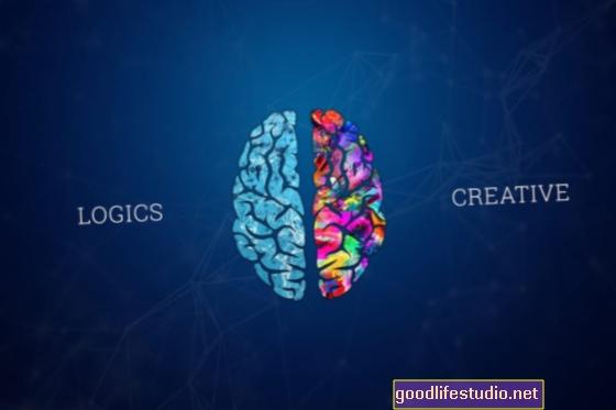 Невромит: Творчеството е в дясното полукълбо на мозъка