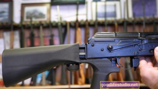 Контрол на оръжието в Ню Йорк: напредък или грешка?