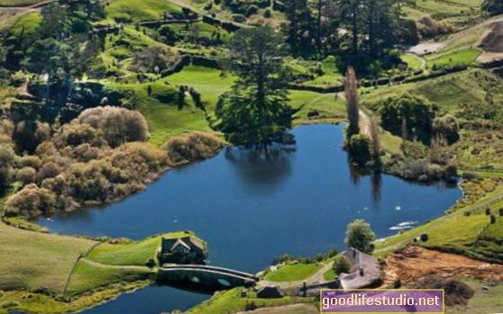 Naujosios Zelandijos gyventojų psichikos ligų suvokimo gerinimas