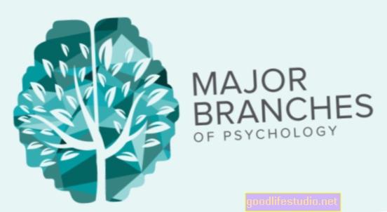 Psychologie kolem sítě: 3. března 2018