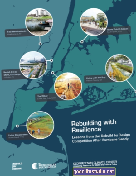 Resiliencia después del huracán Sandy