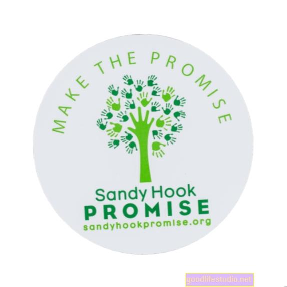 Sandy Hook: Administrativa slibuje 100 milionů dolarů na financování duševního zdraví, ale je tu několik problémů