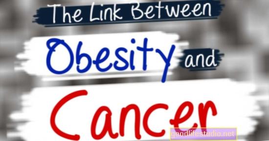 La conexión entre la obesidad y la barrera hematoencefálica