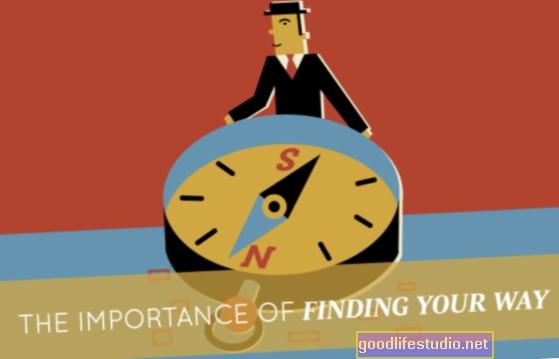 La importancia de encontrar un lugar feliz