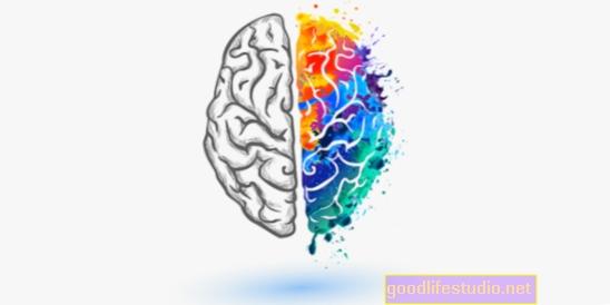 Il mito del genio creativo