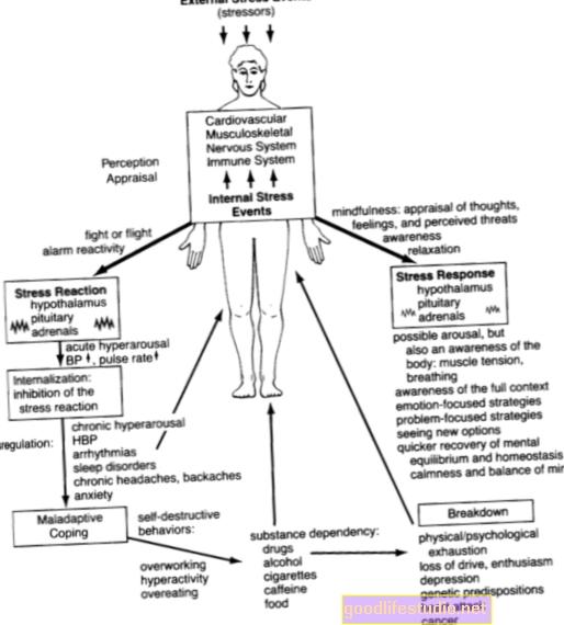 Il ciclo di reazione allo stress