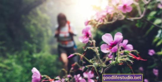 Por qué la naturaleza es tan buena para la salud mental