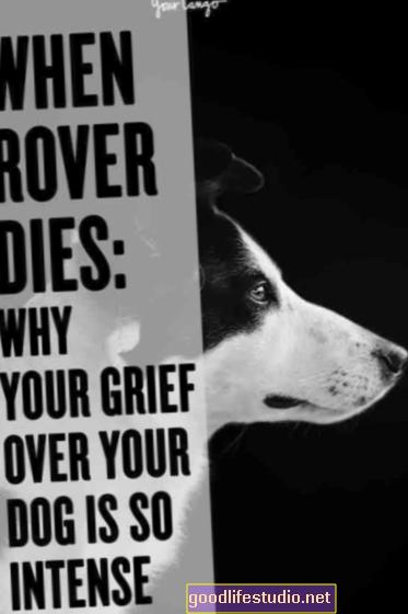 Por qué lloramos tanto por nuestras mascotas