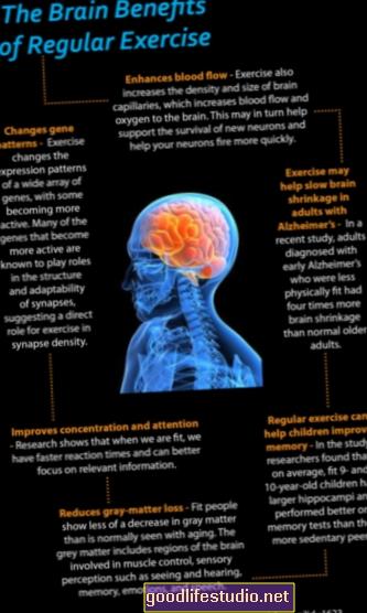 Tu cerebro en ejercicio